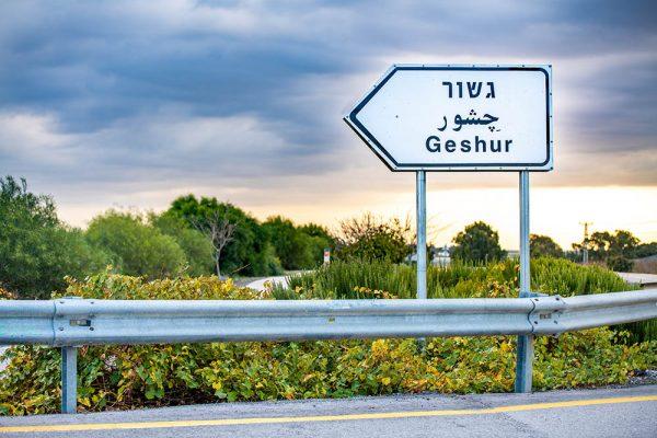 gshur (6)